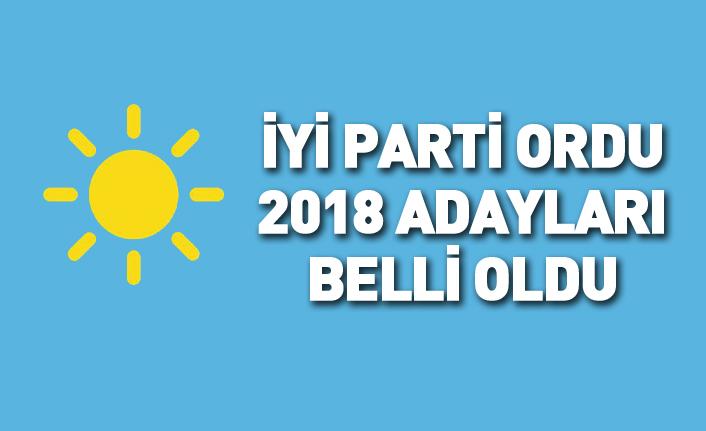 İYİ Parti Ordu 24 Haziran 2018 milletvekili adayları listesi... İşte adaylar
