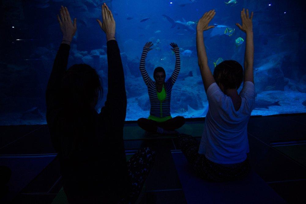 Balıklarla beraber yoga yaptılar