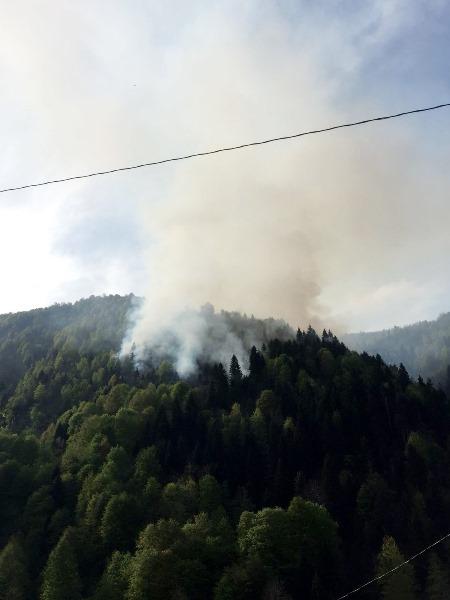 Rize'de ormanda örtü yangını çıktı