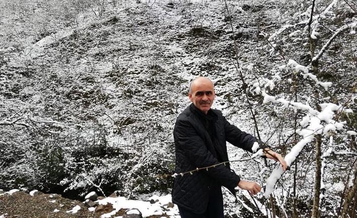 Fındık üreticisine kar şoku