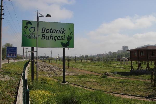 Karadeniz'in tek Botanik Parkı sökülüyor