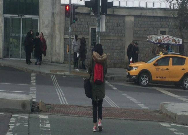 Sokak köpeği yeşil ışığı bekledi, yayalar kırmızıda geçti