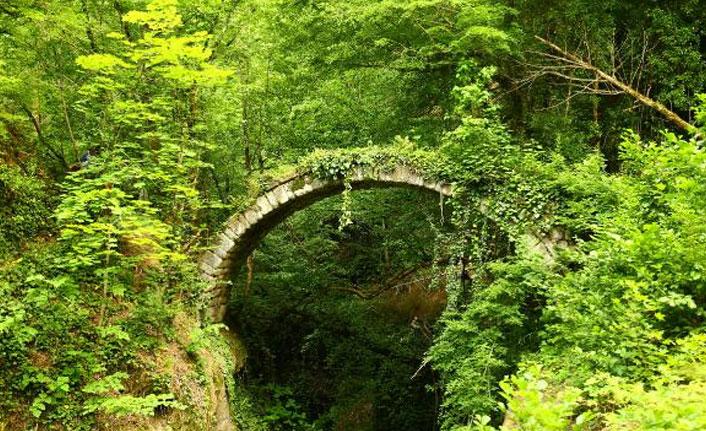 Tarihi köprü keşfedildi