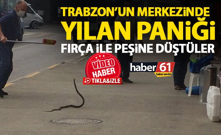 yılan paniği