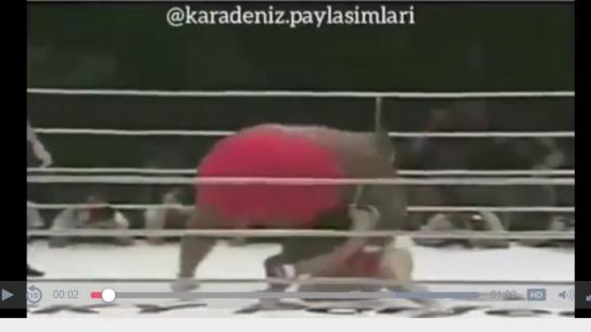 Şişman boksöre Karadeniz dublaj