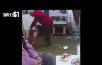 Komutllarına uymadı diye köpeğe vurdu